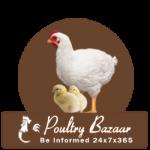 Poultry Bazaar